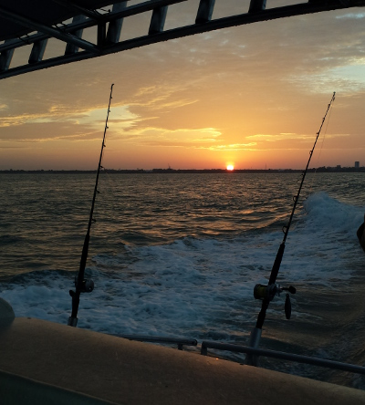darwin_fishing_sunrise