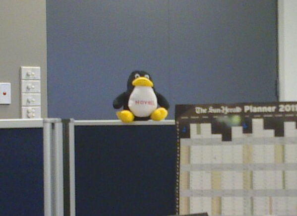 Tux looking over me